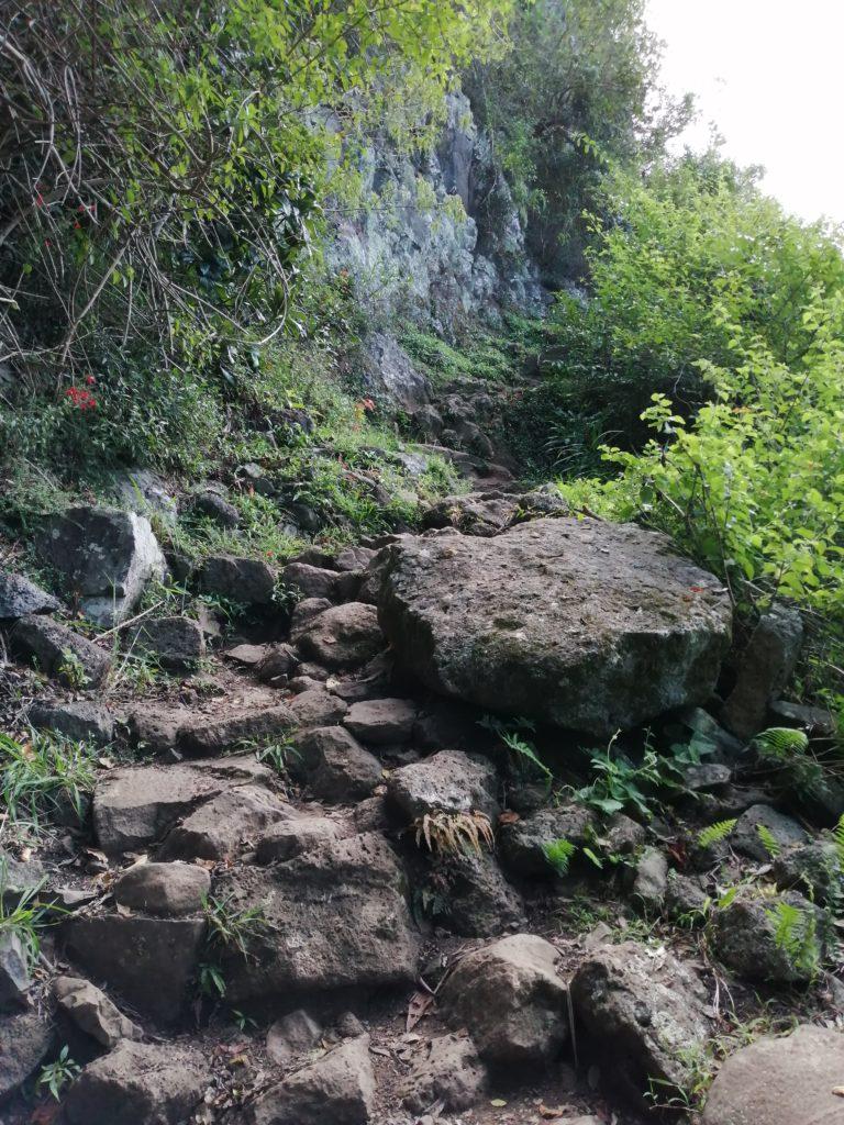 Ballade à Roche Verre bouteille - un sentier randonnée