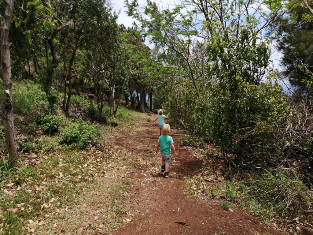 Sentier du cap bernard à la Réunion