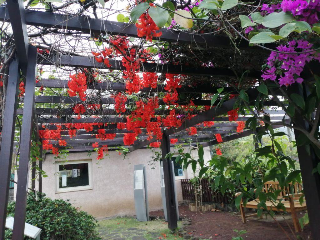 Entrée du Jardin Botanique de Mascarin de Saint Leu