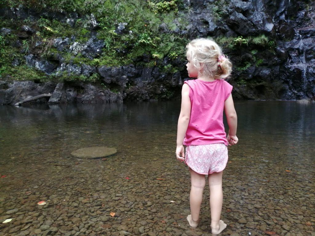Lila a la cascade maniquet