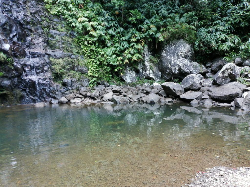 Le bassin de la cascade maniquet